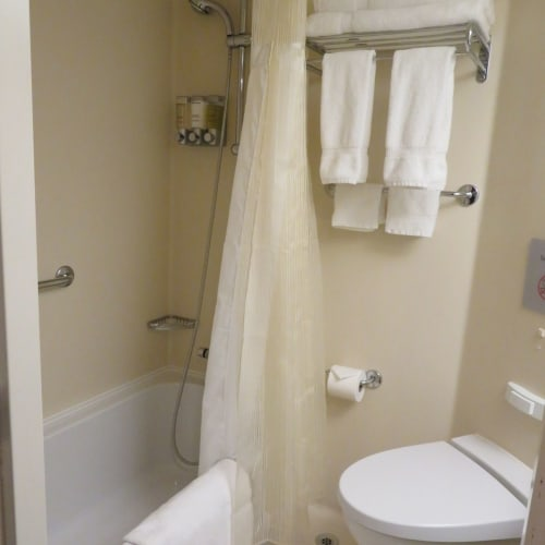 ホーランドアメリカラインの海側客室はバスタブを備え、シャワーも固定式ではなくマッサージヘッドの付いたハンドシャワー | 客船ニュー・アムステルダムの客室
