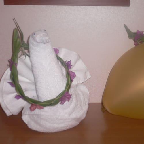 カウントダウンの時に降ってきた風船、イル・デ・パン上陸の際にもらった花冠をつけたタオルの白鳥 | 客船エクスプローラー・オブ・ザ・シーズのアクティビティ、船内施設