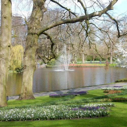 Day7#アムステルダム#キューケンホフ公園 | アムステルダム