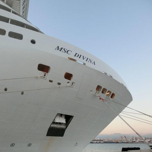 ソフィア・ローレンが命名した MSC ディヴィーナ | 客船MSCディヴィーナの外観