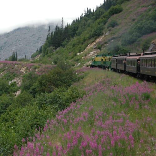 クルーズ船の目の前に停まっている列車ホワイトパス&ユーコン鉄道でカナダとの国境まで | スカグウェイ(アラスカ州)