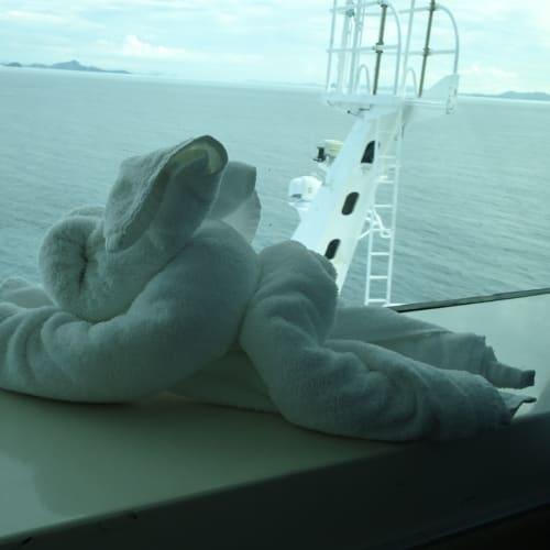 前方視界180° 終日Bridge気分 | 客船ボイジャー・オブ・ザ・シーズの客室