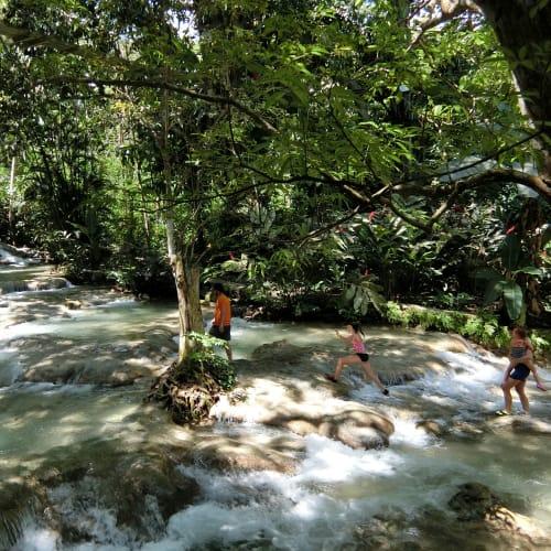 ジャマイカのダウンズリーバーの川登に挑戦。とっても面白かった。ただ案内人へのチップ(全員20ドルぐらい払っていた)や、有料写真の強要がしつこかった(拒絶)。   ファルマス