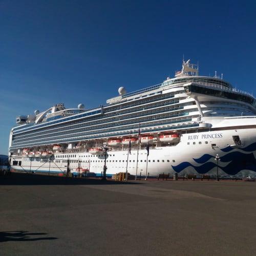 まだカナダ、一晩でビクトリアに到着。 この港から、フィッシャーマンズワーフを経て市街地まで歩ける。30分ぐらい。 | ビクトリア(バンクーバー島)での客船ルビー・プリンセス