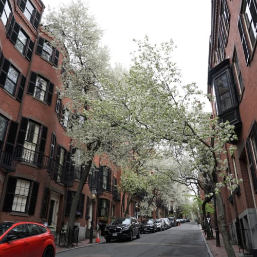ボストンらしい町並みが続くビーコンヒル | ボストン(マサチューセッツ州)