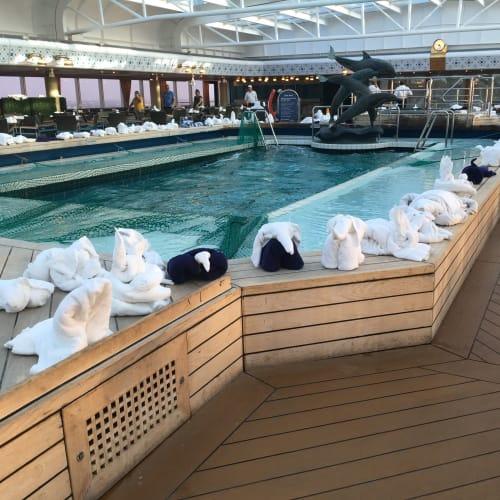 朝の間だけ楽しめます   客船ウエステルダムのアクティビティ、船内施設