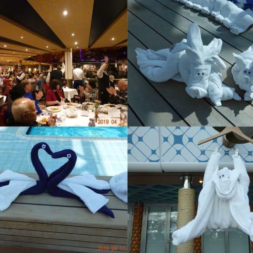 お別れパーティーとプールサイドのタオルアート | 客船ウエステルダムのアクティビティ、船内施設
