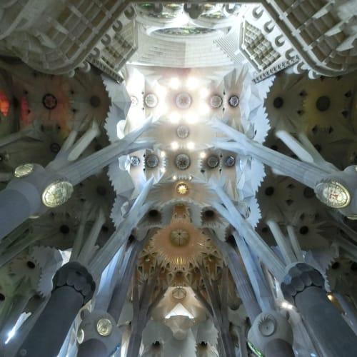 サグラダファミリアの天井 椰子の木の柱とシュロの葉がモチーフ | バルセロナ