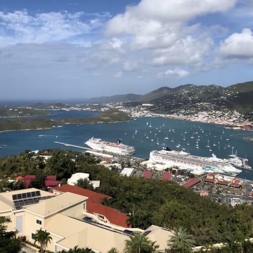 St. Thomas島のSkyRide to Paradise Point ロープウェー降り場付近からの眺望 下に見えるのはもちろん私たちのクルーズ船です | シャーロット・アマリー(セント・トーマス島)での客船ノルウェージャン・ジェイド