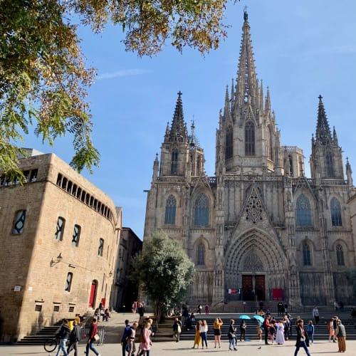 サンタ・エウラリア大聖堂 | バルセロナ