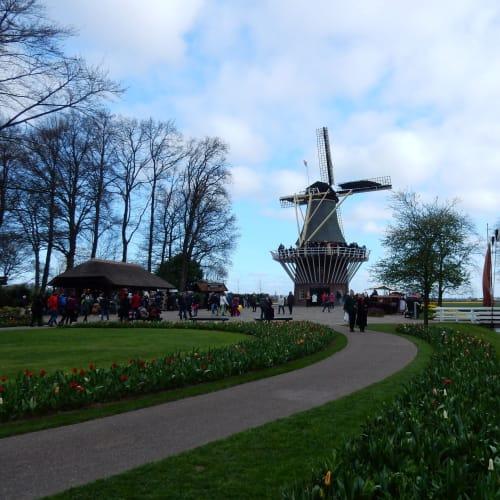 Day7#アムステルダム#キューケンホフ公園#風車と跳ね橋 | アムステルダム
