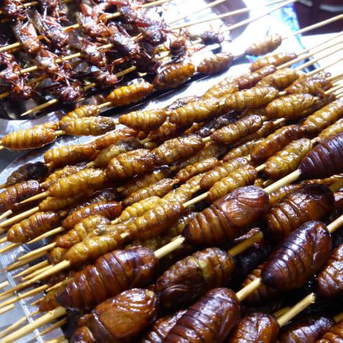 サナギの串焼き | 上海