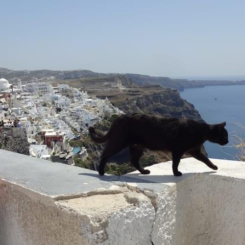 サントリーニ島は のんびり 散策したい | サントリーニ島