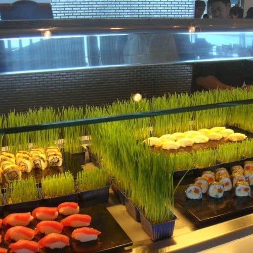 たまには、こんなお寿司も出た。   客船セレブリティ・イクノスのブッフェ、フード&ドリンク