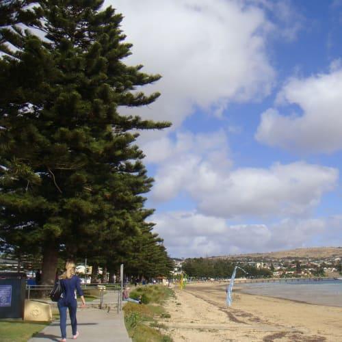 ポートリンカーン。港から市街まで海岸を歩く。(27日)