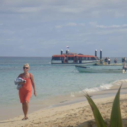 フィジー、ドラヴィニ島。殆どの島はテンダーで上陸。   ドラビューニー島