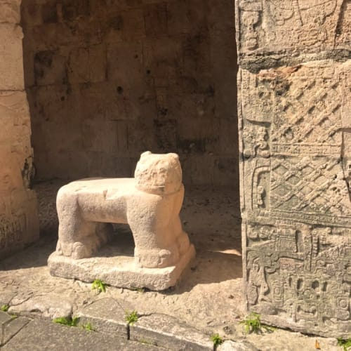 メキシコ ユカタン半島にて。 チェチェン・イッツァのマヤ遺跡。 ジャガー。 | コスメル