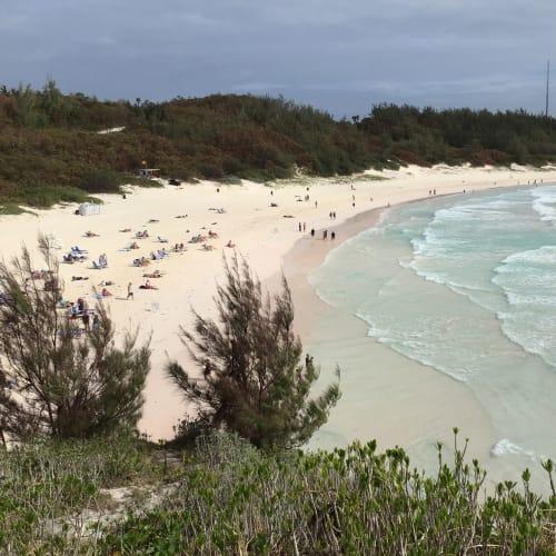 ピンク色の砂浜「Horseshoe Bay Beach」 | キングスワーフ(バミューダ諸島)