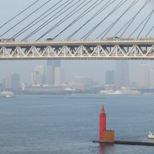 最終日には横浜・大黒埠頭に着岸。 大さん橋にはダイヤモンド・プリンセスが着岸。 | 横浜での客船ダイヤモンド・プリンセス