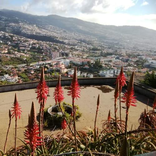 フンシャル・Ponta da cruzからフンシャルの街を一望 | フンシャル(マデイラ諸島)