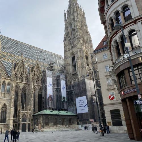 屋根が特徴的なウィーンの代表的なランドマーク、シュテファン大聖堂です。 | ウィーン