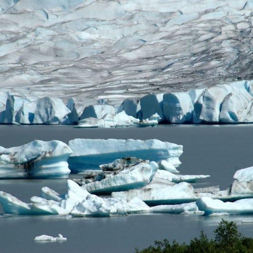 氷山の一角 | ジュノー(アラスカ州)