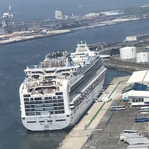 セリオンタワーからの後ろ姿 | 秋田での客船ダイヤモンド・プリンセス