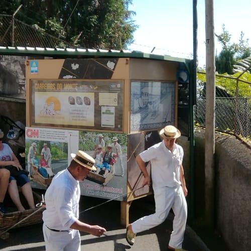 フンシャル・スリル満点のトボンガ | フンシャル(マデイラ諸島)