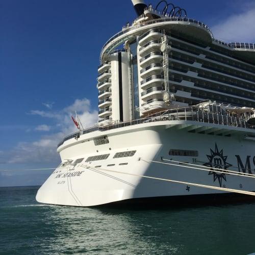 客船MSCシーサイドの外観