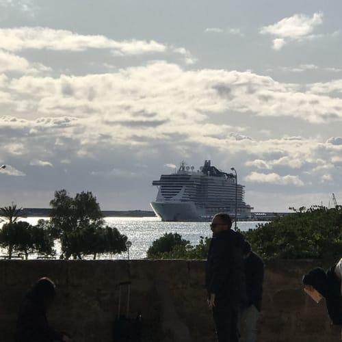 客船MSCシービューの外観