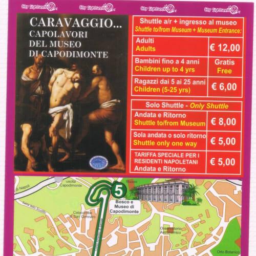 ナポリ・国立カポディモンテ美術館(カラヴァッジョやブリューゲル所蔵):バスターミナルから往復と美術館入館料込みで12ユーロは行くべきでしょう | ナポリ