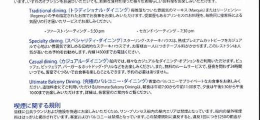 2013GW サン・プリンセス日本発着クルーズ乗船記 第一日 その3 初日のドキュメント