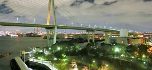 ダイヤモンドプリンセス  【動画あり】大阪港の夜景