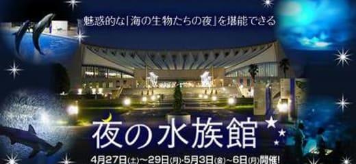 2013GW サン・プリンセス日本発着クルーズ乗船記 第七日 その8 博多観光その5