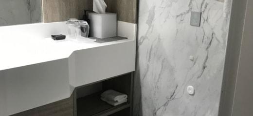 2019セレブリティ・ミレニアムおひとり様乗船記(4)内側客室シャワールーム&トイレ