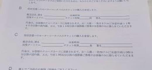 2013GW サン・プリンセス日本発着クルーズ乗船記 第四日 その2 下船申請書?