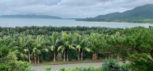 ダイヤモンドプリンセス  夏をさきどり(石垣島と基隆観光)