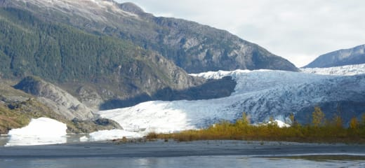 ホーランドアメリカ オーステルダム号 アラスカクルーズ~4日目~ジュノー メンデンホール氷河