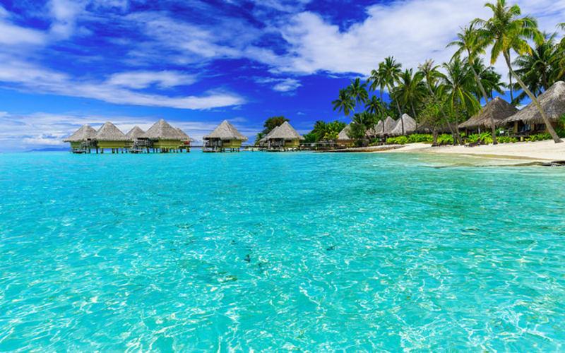 美食と青い海で五感が喜ぶ!ウィンドスター・クルーズで巡るタヒチの島々