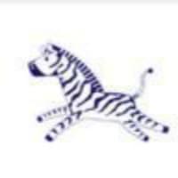 Zebra Junior Sports icon