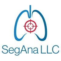 SegAna icon