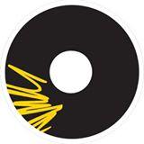 Elinvision icon