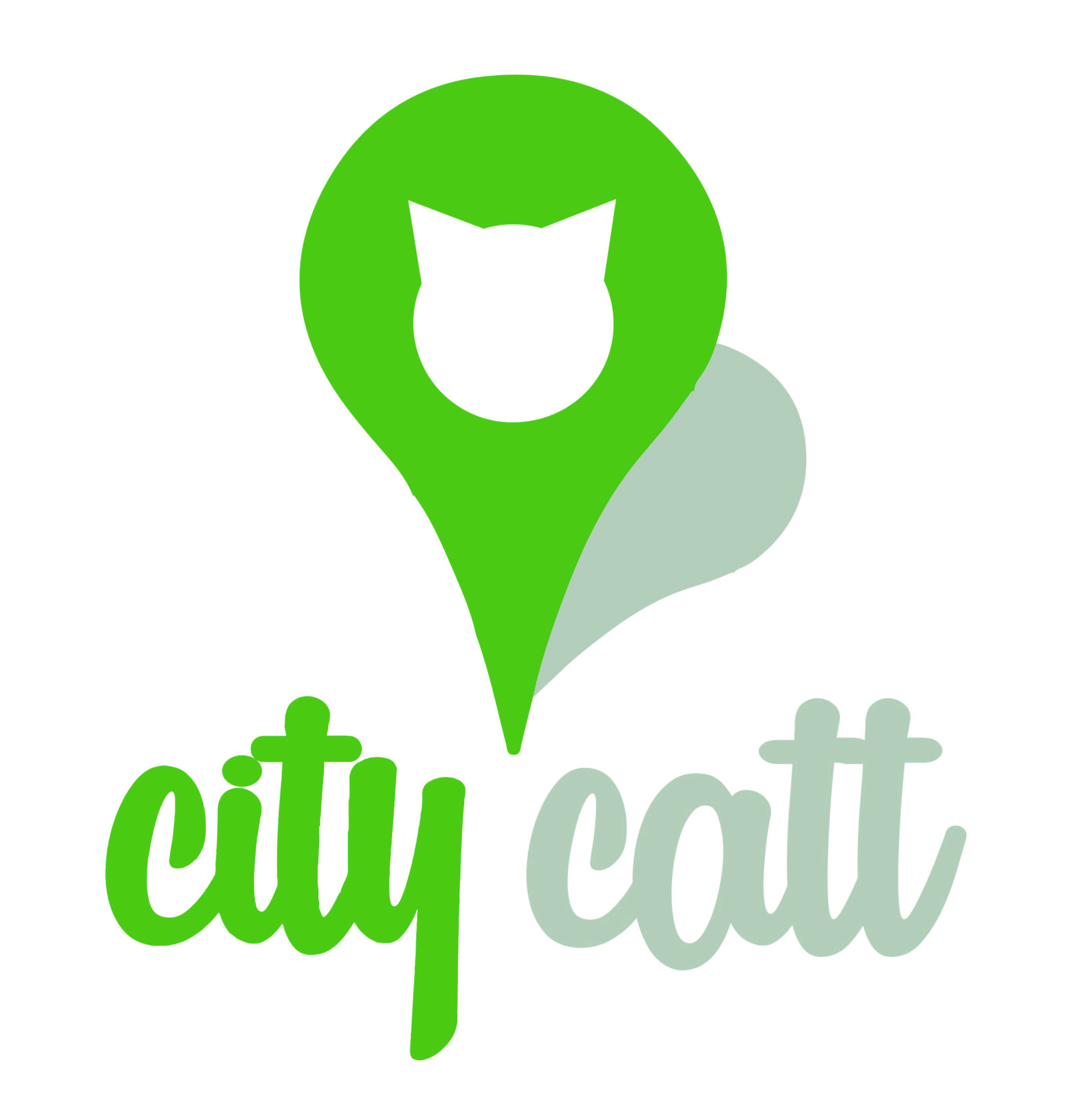 City Catt icon