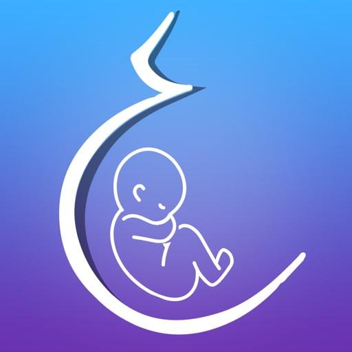 Fetal Life