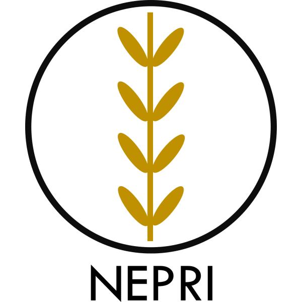 NEPRI Finance logo