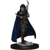 Pathfinder Battles - Premium Painted Figure 2020