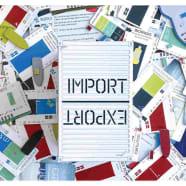 Import / Export Thumb Nail