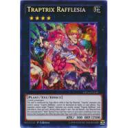 Traptrix Rafflesia Thumb Nail