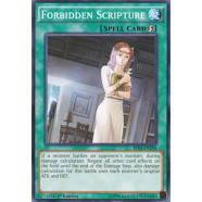 Forbidden Scripture Thumb Nail