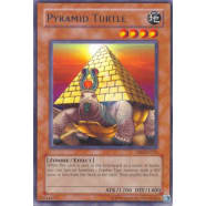 Pyramid Turtle Thumb Nail